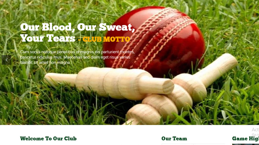 Welcome to the New Swords Cricket Club Website